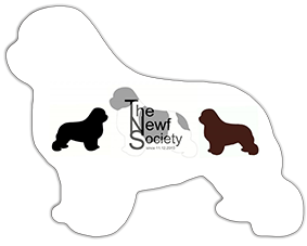 The Newf Society Newfoundlander club in nederland
