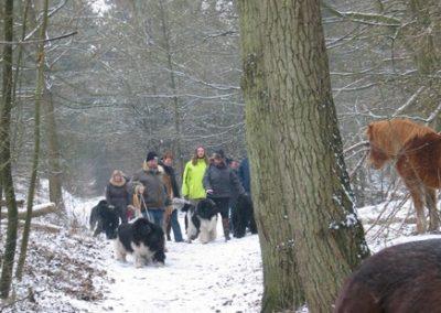 2012-02-12-TNS-snertwandeling-Oostvoorne---Rockanje--25-