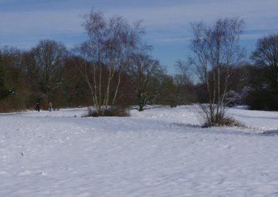 2013-02-10-snerten-0ostvoorne--14-