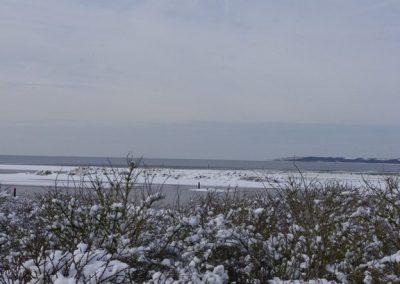 2013-02-10-snerten-0ostvoorne--4-