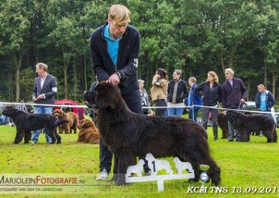 kcm-14-deel-2--3--Masier-1e-puppy-klasse-reu-en-beste-pup